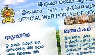 Government Web Sites