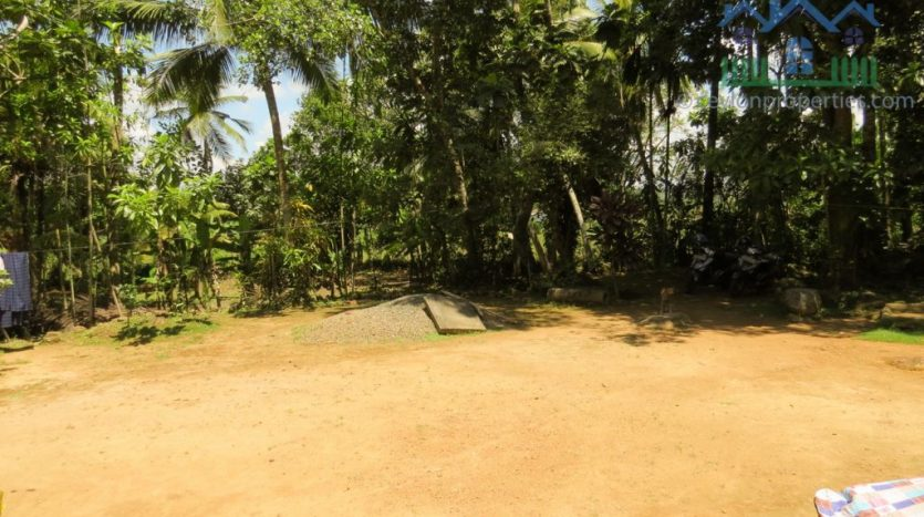 Ref : CS294 – Property with Paddy View and Green Surrounding